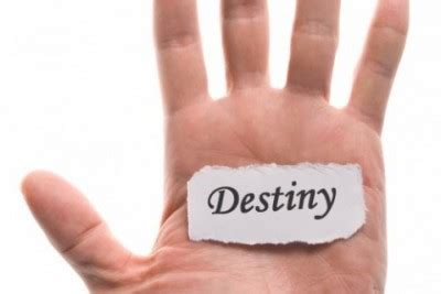 You choose your own destiny essay